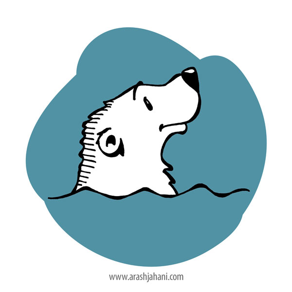 bear Illustrator